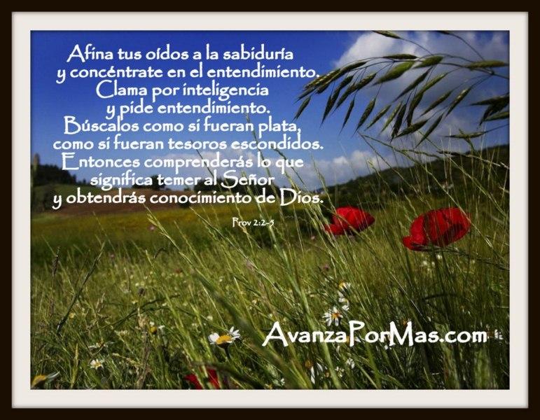 Imagenes Cristianas De Amor Y Amistad