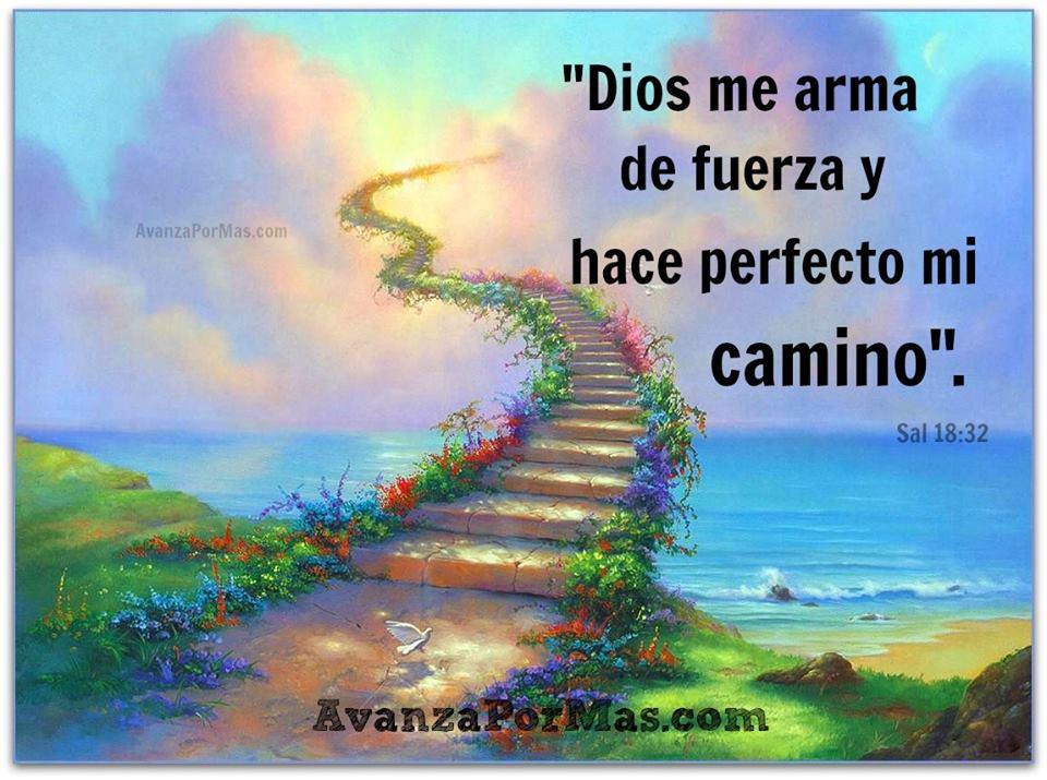 Postal Dios Me Arma De Fuerza Y Hace Perfecto Mi Camino
