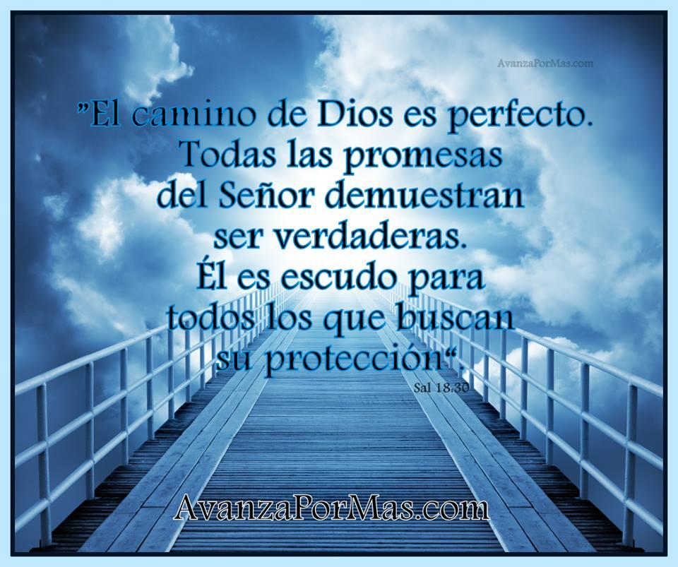 Postal El Camino De Dios Es Perfecto Imágenes